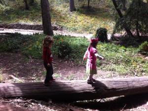 Crossing a log bridge